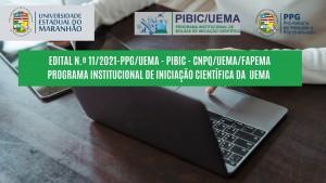 IMG PIBIC UEMA 2021